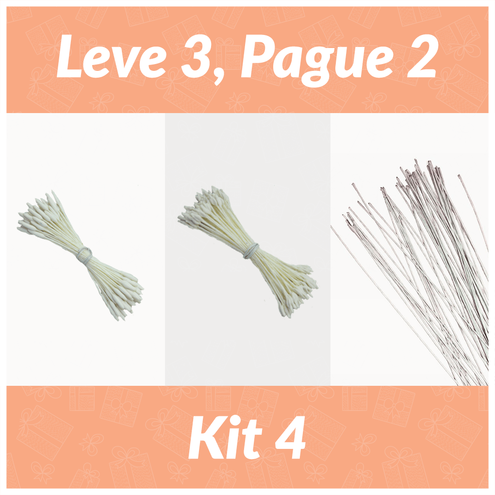 Kit 4 Leve 3 Pague 2