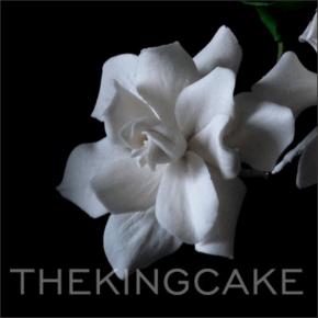 Conjunto de Cortadores da Flor Gardênia