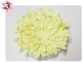 Cortador de Flor Crisântemo Conjunto com 5