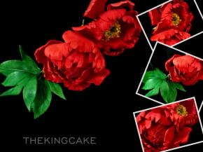 Cortador de Flor  Peônia Conjunto com 5 peças