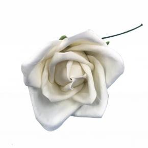 Rosa de Biscuit